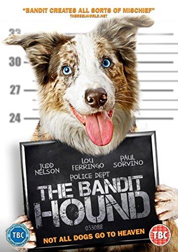 THE_BANDIT_HOUND_High_Fliers